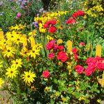 Blumenschmuckwettbewerb 2020
