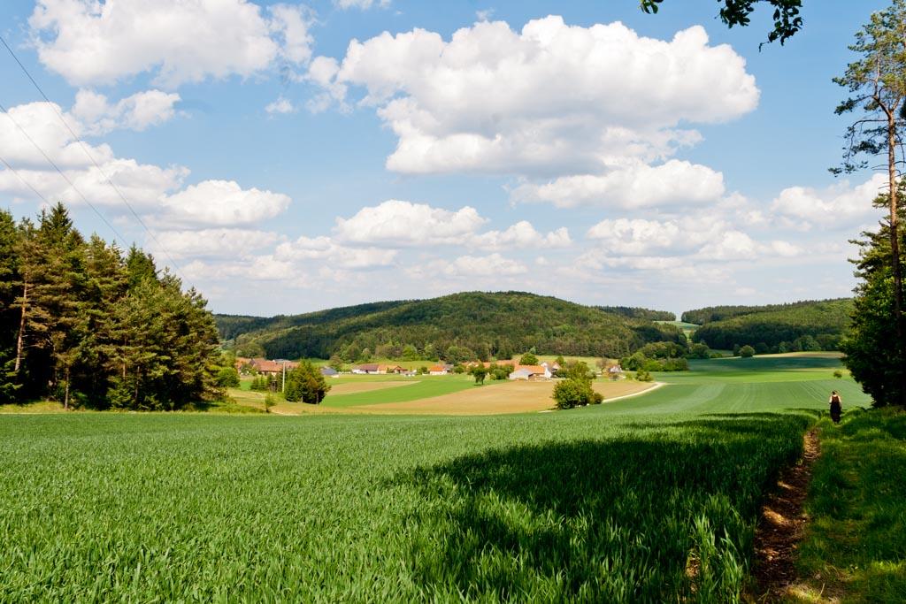 Amberg-Sulzbacher Land-1