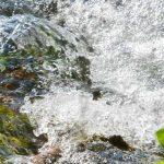 Sitzung des Zweckverbands Wasserversorgung der Bachetsfeld-Gruppe am 30.09.2021